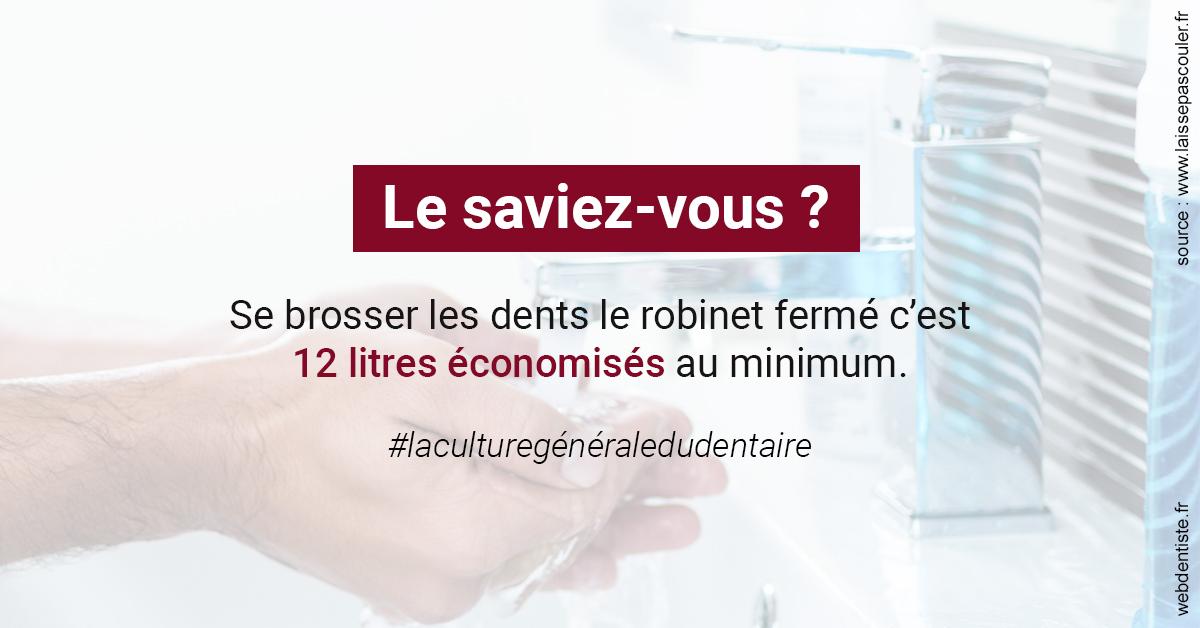 https://dr-aurelie-gonzalez.chirurgiens-dentistes.fr/Economies d'eau 2